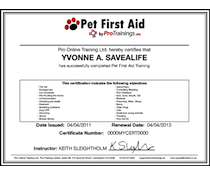 Pet First Aid Level 2 (VTQ) Training and Test