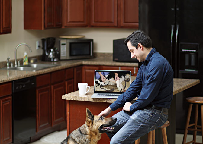 Man watching pet first aid video on laptop with dog in kitchen